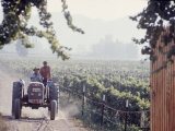 Workers on a Tractor at the Conchay Toro Vineyards, Chile Photographic Print by Bill Ray