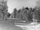 Snow Covering Countryside Northeast of Lake Ladoga Photographic Print by Carl Mydans