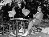"MGM Screenwriter John L. Mahin Sitting Outdoors, Re-Enacting His ""Laying an Egg"" Premium Photographic Print by Paul Dorsey"