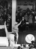 Inauguration of President Dwight Eisenhower, Approached by a Parade Cowboy who Lassoes Him Premium Photographic Print by Hank Walker