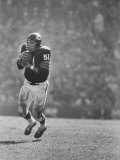 Linebacker for the Bears Dick Butkus Metal Print by Bill Eppridge