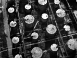 Aerial View of Storage Tanks at Humble Oil Co Premium Photographic Print by Margaret Bourke-White