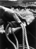 The Rough, Weathered Hand of an Oldtime Cowboy, Holding Rope Premium Photographic Print by John Loengard