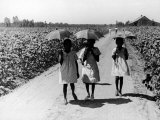 Three Young Barefoot African American Sharecroppers' Daughters on their Way to Sunday School Premium Photographic Print by Alfred Eisenstaedt