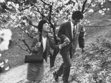 Matsushita Electronics Corp Employees Teruo Kobuchi and Fiancee on Date Surrounded by Cherry Trees Premium Photographic Print by Bill Ray