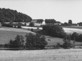 Danish Dairy Farm Premium Photographic Print by James Whitmore