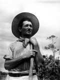 Italian Man Working in the Field, Cleaning the Coffee Trees Premium Photographic Print by John Phillips
