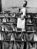 Man Sorting Mail in the State Dept. Building, Each Bag is Labeled with Foreign City Destination Premium Photographic Print by Alfred Eisenstaedt