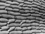 View of Bags of Wheat Piled Up Together Premium Photographic Print by John Phillips