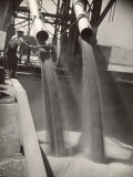 Workers Guiding Granary Filling Spouts as They Pour Tons of Wheat into River Barge for Shipment Premium Photographic Print by Margaret Bourke-White