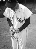 Ted Williams Putting on His Batting Gloves Premium Photographic Print by Ralph Morse