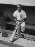 Chicago Cub&#39;s Ernie Banks, Stooping in the Dug-Out Holding Two Bats Against Cincinnati Reds Premium Photographic Print by John Dominis