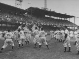 Baseball Players Catch Ball Thrown by Pres. Harry S. Truman at Opening Game for Washington Senators Premium Photographic Print by Marie Hansen