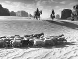 Native American Indians Herding their Sheep Through Desert Reproduction photographique sur papier de qualité par Loomis Dean