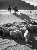 Native American Indians Herd Sheep Reproduction photographique sur papier de qualit&#233; par Loomis Dean