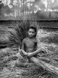 Native Making Grass Sheafs for Roofs Premium Photographic Print by Eliot Elisofon