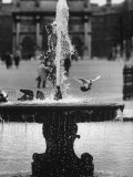 Fountain in Thetuileries Gardens Premium Photographic Print by Stan Wayman