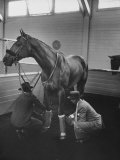 Silky Sullivan Being Prepared for the Santa Anita Derby Premium Photographic Print by Allan Grant