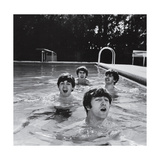 Paul McCartney, George Harrison, John Lennon and Ringo Starr Taking a Dip in a Swimming Pool Kunst på  metal
