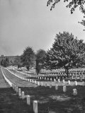 The Sun Shining Down on the Arlington Cemetery Photographic Print by Yale Joel