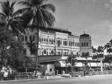 Palm Trees Surrounding the Raffles Hotel Fotoprint van Carl Mydans