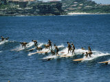 Surfers Riding Waves at Manly Beach Nr. Sydney Premium Photographic Print by John Dominis