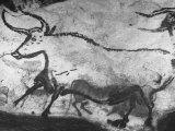 Prehistoric Cave Painting of an Animal Photographic Print by Ralph Morse