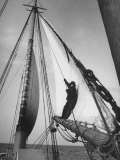 Crew Member Sailing a Pilot Boat in Boston Harbor Premium Photographic Print by Carl Mydans