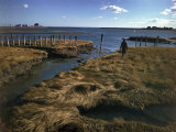 Marshy Flats at Rye Harbor, Nh Photographic Print