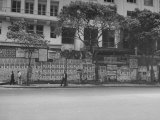 Street Signs Hanging on the Avenida Rio Branco During Election Week Premium Photographic Print