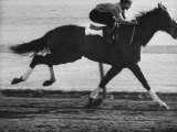 Horse Ridan During Race Premium Photographic Print