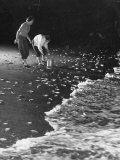 Women Picking Up the Grunion Fish Left on the Beach as Foaming Tide Ebbs Premium Photographic Print by Loomis Dean