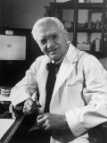 Alexander Fleming Posing at His Desk Surrounded by Papers Premium Photographic Print by Alfred Eisenstaedt