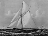 Photograph of Sketch of the Thistle, the Losing Scottish Entry in Race for America's Cup in 1887 Premium Photographic Print