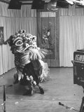 Chinese Boy in Costume Reciting before TV Cameras Premium Photographic Print