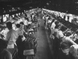 People Working on the Assembly Line at the Magnavox TV Plant Premium Photographic Print