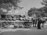 Beer Wagon in the City of Copenhagen Photographic Print