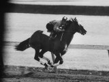 Horse Ridan During Race Photographic Print
