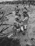 Marines Searching for Viet Cong in the Delta Photographic Print