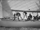 """US Contender """"Constellation"""" in America's Cup Race During Cup Trials Off Photographic Print"""