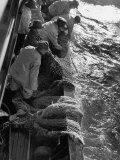 Fishermen Hauling Net onto Boat Premium Photographic Print by Ralph Morse