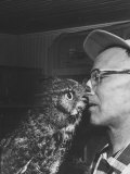 Owl Biting Man's Nose Premium Photographic Print by Peter Stackpole