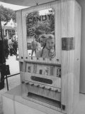 Kids at a Vending Machine in the Us Exhibit, During the Poznan Fair Premium Photographic Print by Lisa Larsen