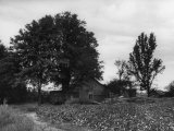 Site of Emmett Till's Kidnapping Photographic Print by Ed Clark