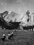Group of Vacationers Riding Horseback Along a Trail in the Canadian Rockies Premium Photographic Print