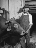 Farm Worker Petting One of the Cows Living on a Dairy Farm Premium Photographic Print by Hansel Mieth