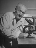 Discoverer of Vitamin C Albert Szent-Gyorgyi, Working with His Microscope Premium Photographic Print