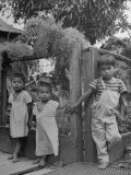 Children of Filipino Field Workers Standing by Fence Premium Photographic Print