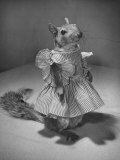 Squirrel Wearing a Baby Doll's Dress Photographic Print by Nina Leen