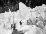 Guide Taking Tourists Through the Pinnacles and Crevices on Fox Glaciers Premium Photographic Print